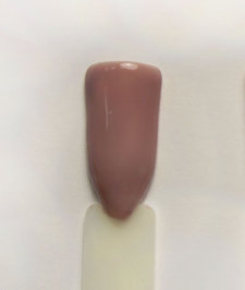 "Гель лак NailsProf ""Classic collection"" №42"